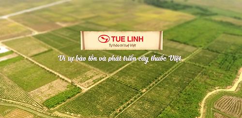 Công ty TNHH Tuệ Linh tuyển dụng vị tríTrình Dược Viên Hà Nội