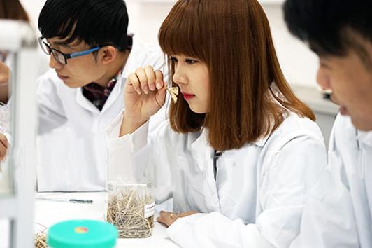 Sinh viên Cao đẳng Dược học nhưng môn gì?